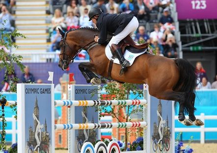 Como se llama el deporte donde saltan los caballos Salto Ecuestre