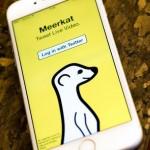 Como se llama la aplicación de la suricata con fondo amarillo