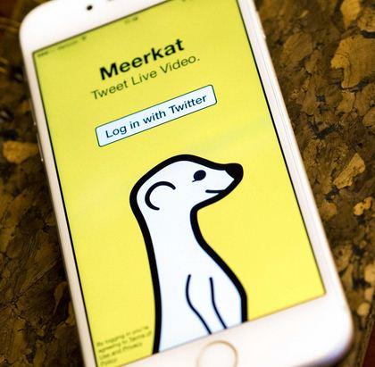 Como se llama la aplicación de la suricata con fondo amarillo Meerkat