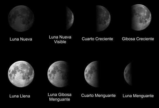 Como se llaman las fases de la luna