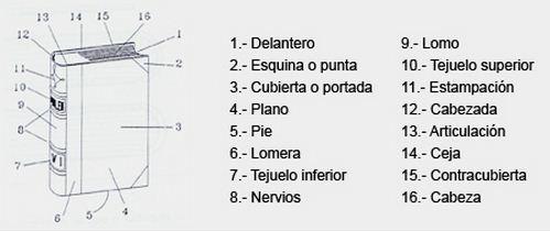 Como se llaman las partes de un libro
