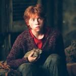 Como se llama la rata de Ron
