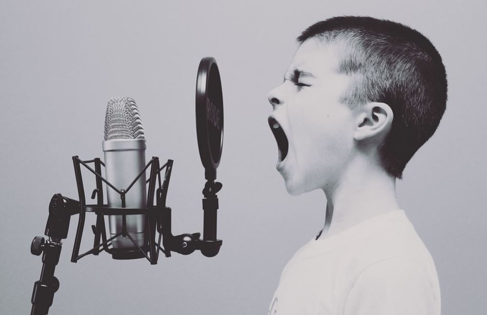Como se llama el protector de microfono