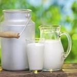 Como se llama el azúcar de la leche