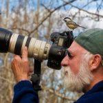 Como se llama el estudio de las aves